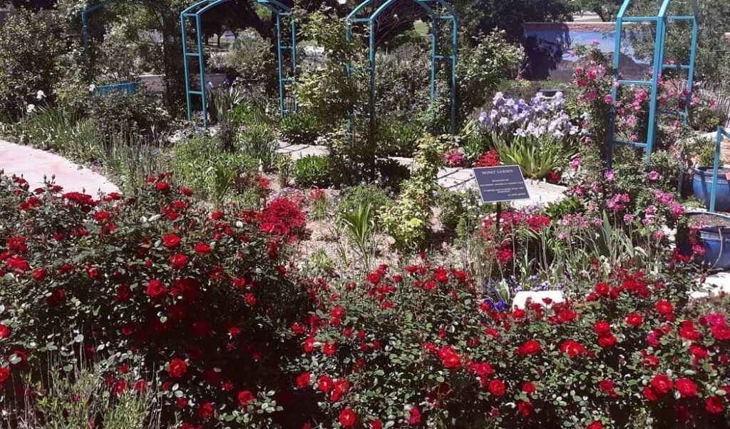 Amarillo Botanical Garden